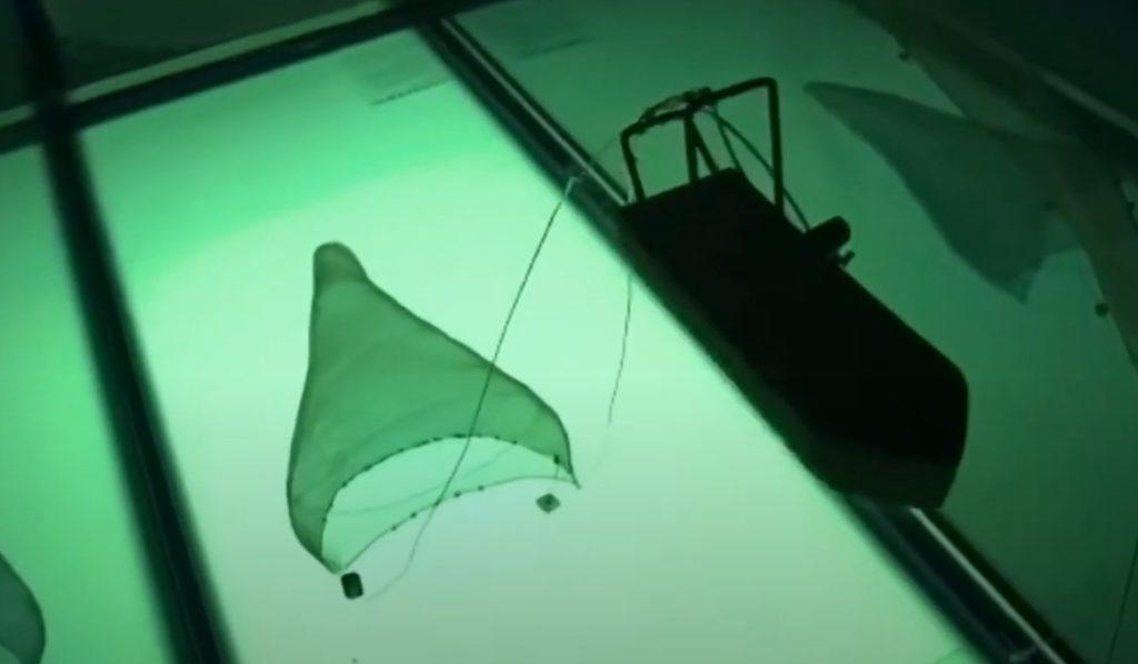 Maqueta didáctica artes de pesca (vista 1)
