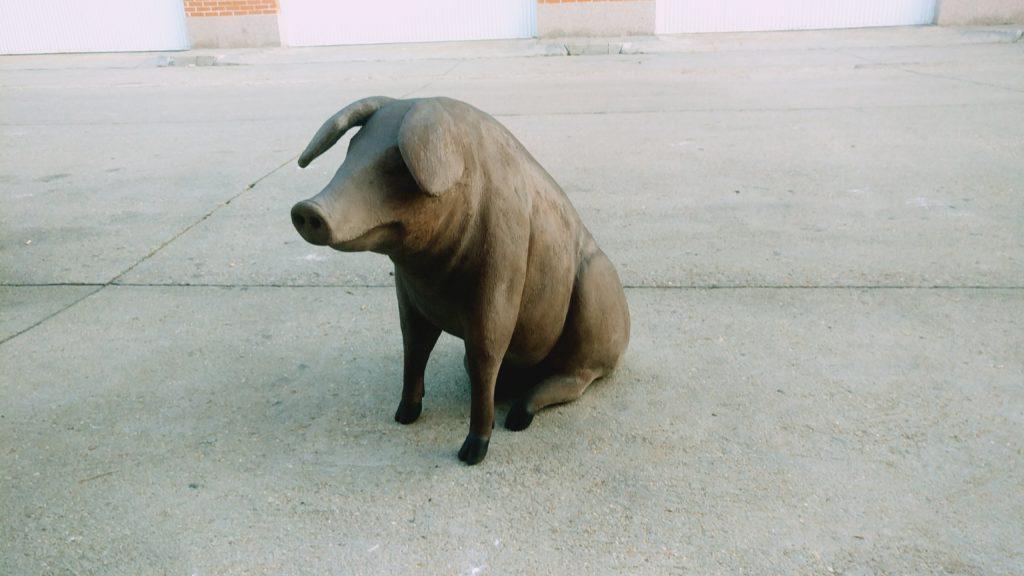 Réplica cerdo ibérico 1