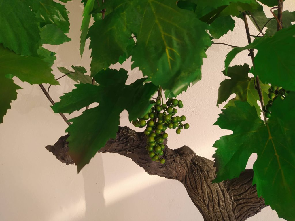 Réplica de viña 4